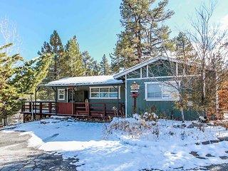 Village Retreat Adorable 2BR Lakeview Chalet