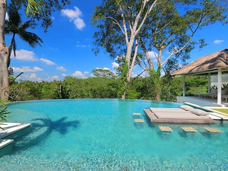 -30% CHINESE NY SPECIAL PROMO, Luxury villa & infinity jungle pool in Ubud