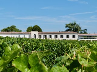 Fantastic Chateau & Wine Property overlooking the countryside