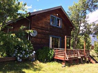 Cabin Puduomo in Coñaripe