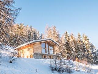 Chalet Christian - ski-in & ski-out luxury spa chalet with jacuzzi & sauna