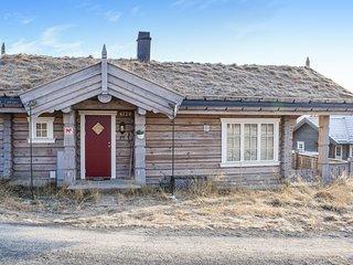 Nice home in Sjusjoen w/ Jacuzzi and 3 Bedrooms (N31992)