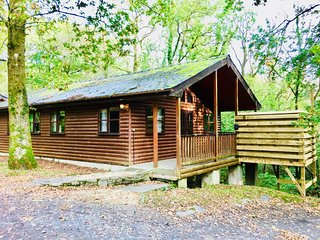 Woodland Lodge -Hot Tub-Woodland Lodges-Carmarthenshire-Tenby
