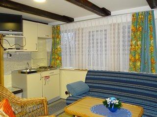 Amazing apartment in Begunje na Gorenjskem w/ WiFi and 2 Bedrooms (SGR098)