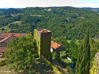 The Watch Tower, unique holiday cottage in Tuscany