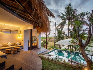 Tropical Private Villa, 3 BR, Canggu w/ staff
