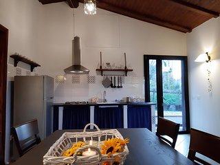 ILA0153 Casa La Violara