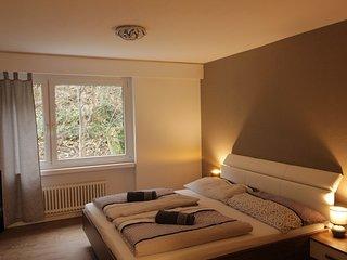 42 Wohnung im Zentrum Luzern