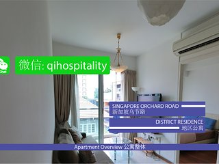 Singapore Orchard Road District Residence CBD2