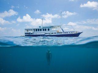 Voyages Gulfaam