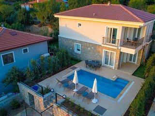 Villa Massi Sogut Daily Weekly Rentals