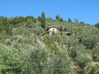 Casa di Iacopo (MTM160)