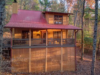 Peaceful dog-friendly cabin w/ wood burning fireplace & a private hot tub!