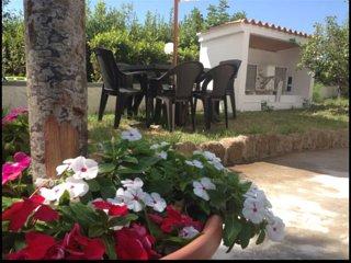 giardino con tavolo, sedie ed ombrellone per mangiare
