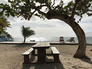 Petit gite sympathique implanté dans un jardin tropical sur notre  plage privée,