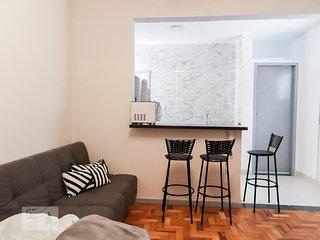 Apartment in Downtown São Paulo