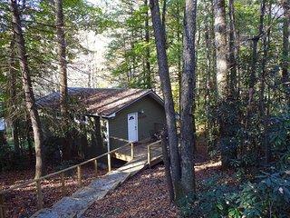Pisgah Hillside Haven - Brevard/Asheville, hiking, mountain biking, shopping, cr