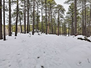 NEW! Flagstaff Getaway ~ 2.9 Miles From Downtown!