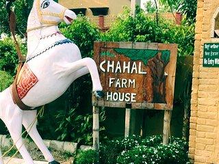 Chahal Farm