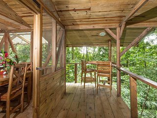 Charming and perfect jungle adventure getaway w/rainforest canopy views!