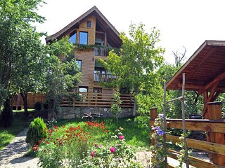 • studio Zollo II • in a Carpathian village • holiday apartment Sibiu Romania