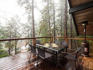 Beautiful cabin with large decks and forest views. Dogs Welcome!