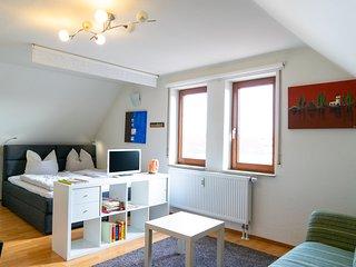 Ferienwohnung nähe Stuttgart.Neu eingerichtetes modernes 1-Zimmer-Appartement.