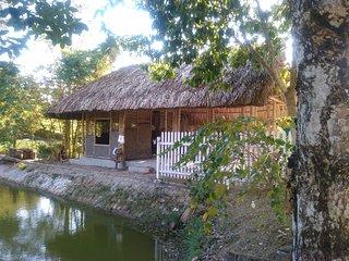 Bungalow de bambous
