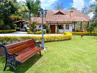 Rionegro,near Aeropuerto.finca Campestre.palmeras