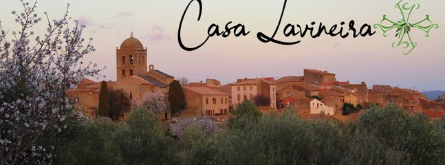 Welcome to Casa Lavineira