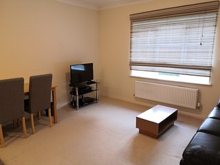 Modern one bedroom flat in best residential area in Reading with parking