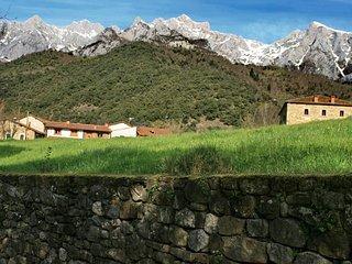 Entorno (incluida la casa, a la derecha en la foto)