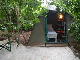 Bamba Kofi Tented Camp, Beachfront Forest, close to the best kitesurfing school