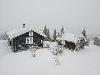 Nice home in Bagn w/ 2 Bedrooms (N32065)