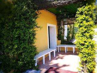 On Holiday Between Sky And Sea geco Di Campiglia pet friendly