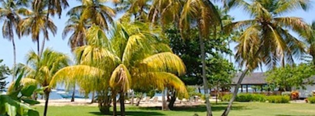 Grenada-Carriacou holiday rentals in St George Parish, Lance-Aux-Epines