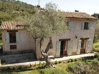 Beautiful and rare traditional provencal villa in ancient olive grove