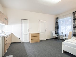 Roomy studio in walking distance to city of Prague by easyBNB