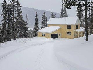 Alma Home w/ Mtn Views ~20 Mi to Breckenridge
