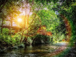 Stranded Cabin by the River - Pinggir Siak(4-6pax)