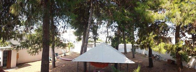 Ampia pineta attrezzata: box doccia con acqua calda, gazebo,amache, sdraio