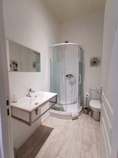 1er étage , salle de douche avec toilette et vasque No 2