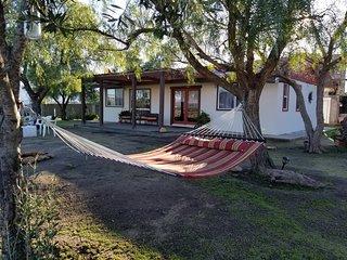 Terra Monarca - Valle de Guadalupe