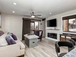 NEW LISTING! Newly remodeled, close to ski resort, mountain view and more!