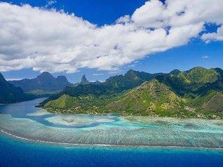 Sail Catamaran MOSKITO VALIENTE II in Moorea (French Polynesia)