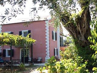 Dassia House