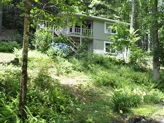 Whispering  Forest- Walking distance to Helton Falls, Dog Friendly, Creek