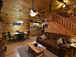 A Bearable Cabin - Hot tub, WIFI, Fire Pit!!!