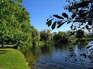 Superbe duplex très lumineux et calme avec vue sur le Lac  (5 personnes)
