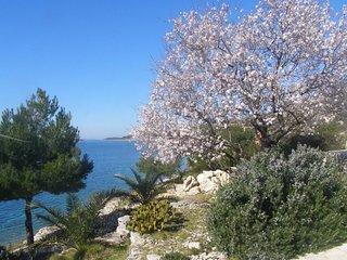 Mar H(6) - Island Kornat - Croatia